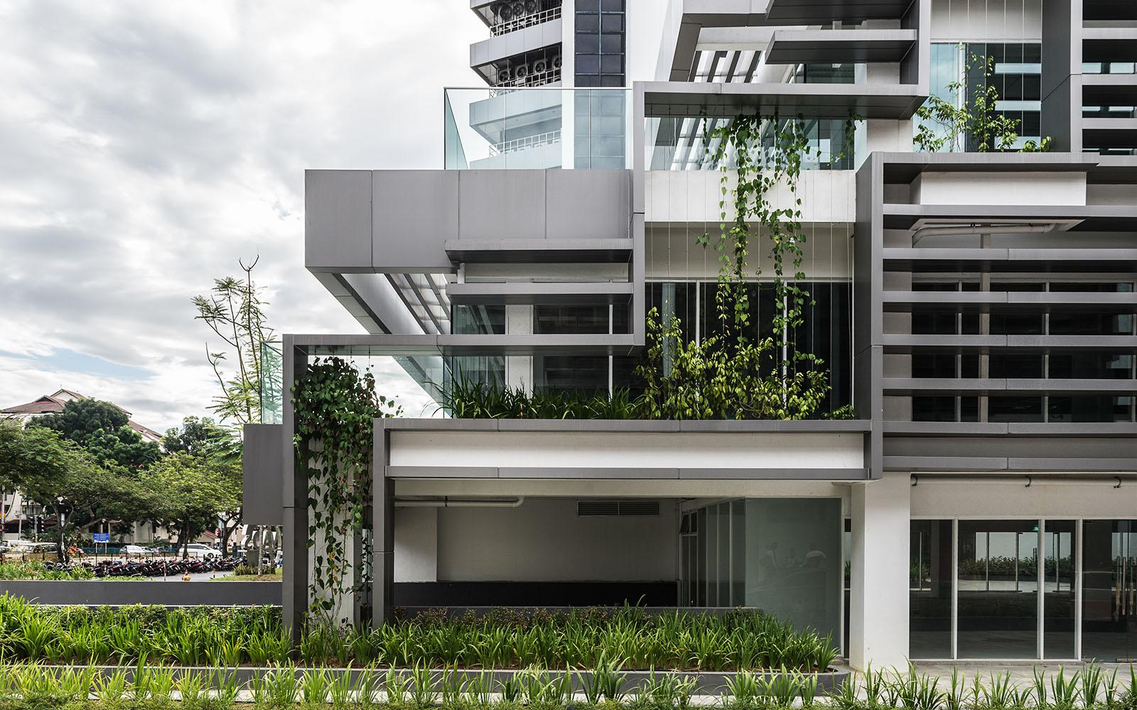 IMG 2 green architect innovative verticle planter setup