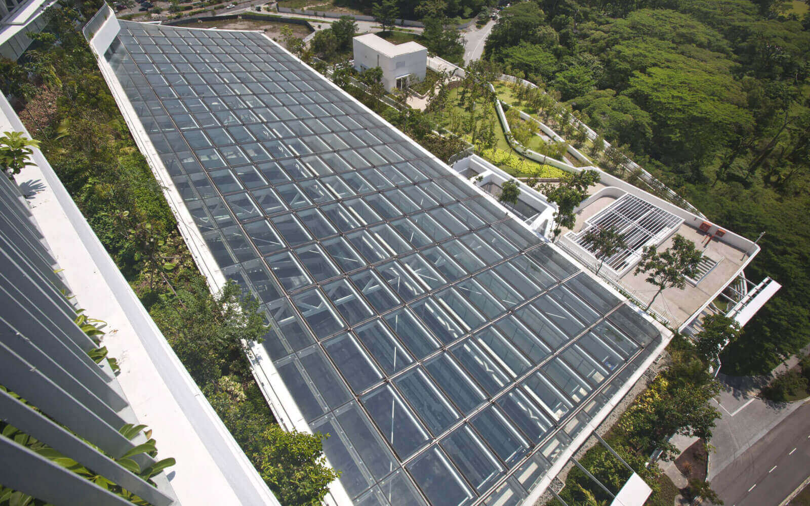 ecological architects filtration system for solaris