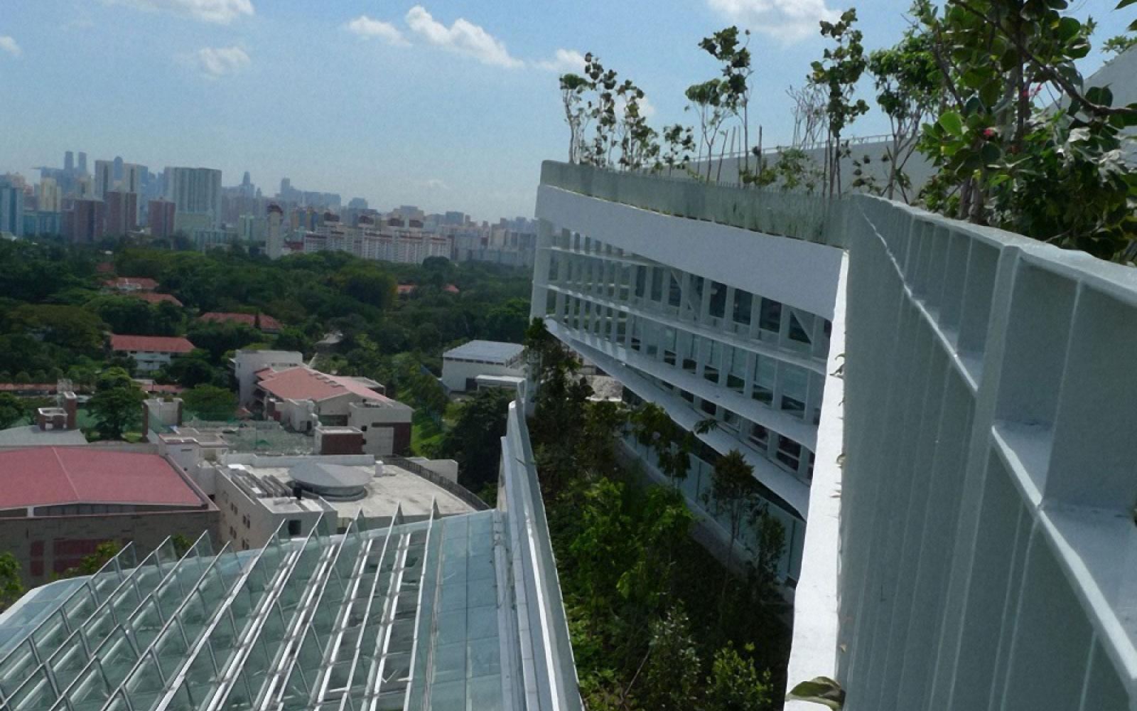 Ecological architect planter box for solaris